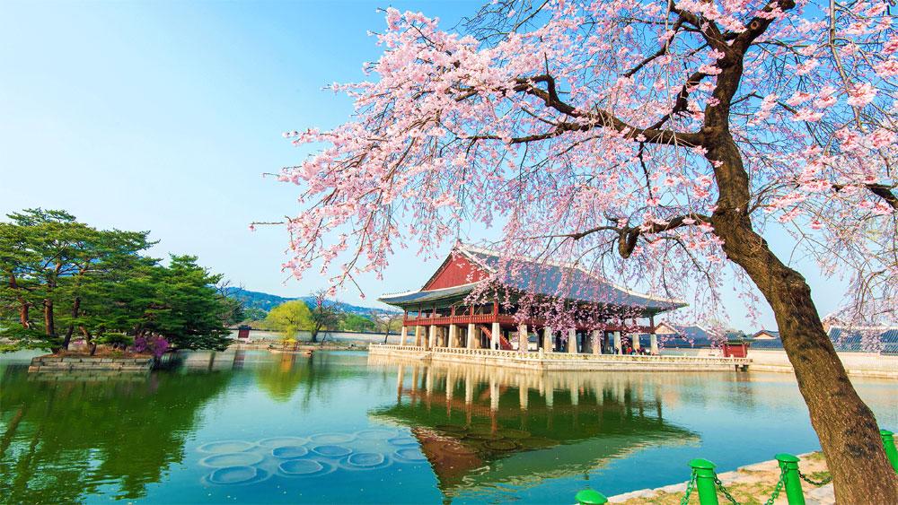 Hàn Quốc chia sẻ chính sách phát triển du lịch với các nước đang phát triển